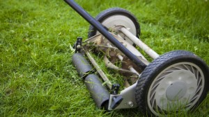 Push Reel Mowers The Complete Buying Guide