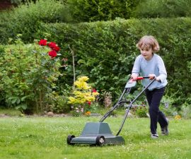 are lawnmowers age restricted
