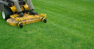 Top 10 Zero Turn Lawn Mowers Compared